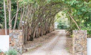 Augustine - Byron Bay - Driveway