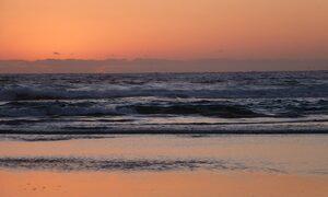 Jugoon - Tallow Beach