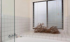 Beachwood - Bathtub