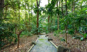 PT's - Resort Style Luxury - Nature