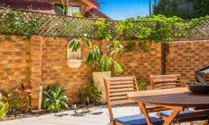 Mango Tree - Byron Bay - Courtyard