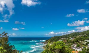 The Palms at Byron - Wategos Beach - Byron Bay - View